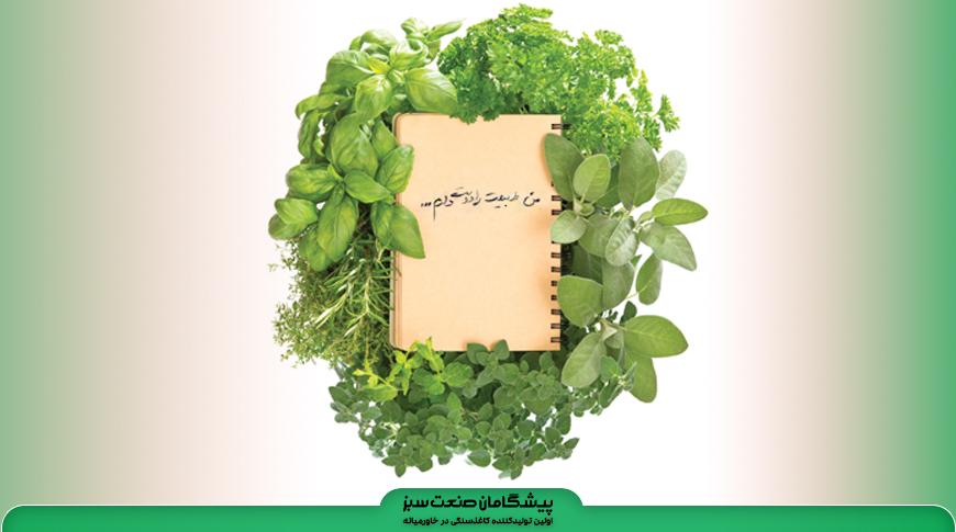 کاغذسنگی هدیه ای برای محیطزیست